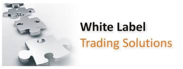 Best White Label Forex Solutions